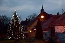Vánoční strom - Dříteň,