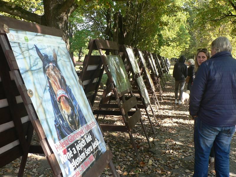 Lesnický den na zámku Ohrada v Hluboké nad Vltavou nabídl poznání náročné práce lesníků.