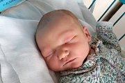 Michaele Váchové a Michalu Hanetšlegrovi se 28. listopadu 2017 v 8.24 hodin narodil syn Jakub Hanetšlegr. Po porodu vážil 3730 gramů. Spolu se sourozenci Adamem a Bibiankou bude vyrůstat v Adamově.