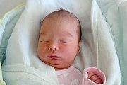 Dvouapůlletá Ela se v pondělí 27. 2. 2017 v 9.55 hodin dočkala malé sestřičky Ivy Hejlové. 3,36 kg vážící holčičku přivedla na svět maminka Petra Hejlová. Rodina bydlí v Českých Budějovicích.