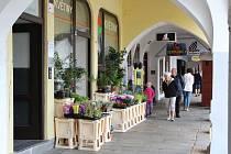Náměstí Přemysla Otakara II. a jeho okolí je prošpikováno kavárnami a restauracemi. Najdete zde ale i obchody.