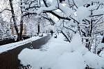 Zimní žánry z Českých Budějovic