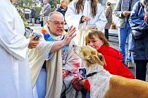 I na zvířátka myslí církev.