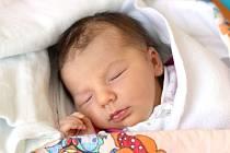 Hamr bude domovem novorozené Adriany Panenkové. Maminka Veronika Panenková ji přivedla na svět 28. 7. 2020 v 8.31 h. Váha po porodu ukazovala 3,16 kg.