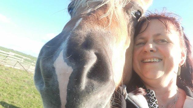 Henczeovi mají ve výběhu koně.