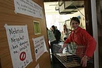 Události 2011 na jihu Čech - Azbest ve škole