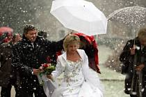První letošní sníh překvapil i svatebčany v zámeckém parku v Hluboké nad Vltavou.