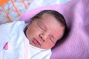 Liliana Sazmová je prvním miminkem manželů Libuše a Jana Sazmových. Narodila se 2.12.2018 ve 4.41 h, vážila 2,65 kg. Bydlet bude v Českých Budějovicích.