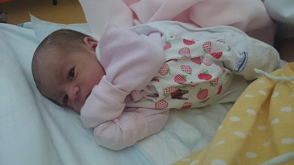 Prvorozenou dceru Magdalénu Hejmanovou přivítali 26. 12. 2018 na světě manželé Kateřina a Martin Hejmanovi z Trhových Svinů. Na svět přišla ve 21.15 h., vážila 2,86 kg.