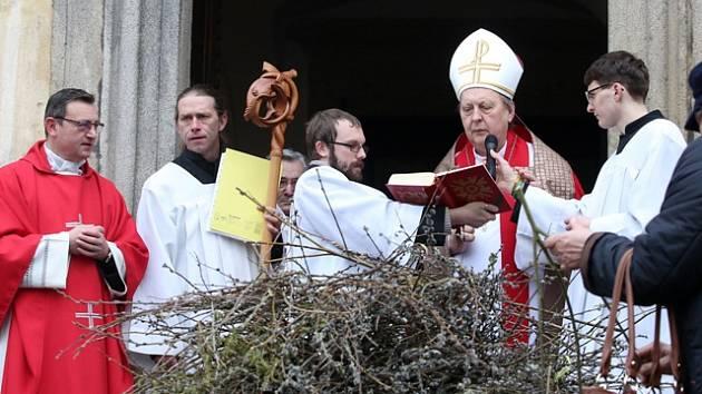 V Českých Budějovicích se v neděli konalo tradiční svěcení ratolestí.
