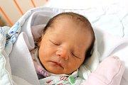 Prvorozená dcera Lýdie Reniersové Kristýna Reniersová spatřila svět 10. 12. 2018 ve 14.15 h. V tu chvíli vážila 3,12 kg. Domovem jí bude Svatý Jan nad Malší.