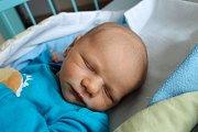Osmiletá Vanesa a dvouletý Patrik se nemohli dočkat dalšího sourozence. Denis Gregor se mamince Lence Schmidtové narodil 25. 9. 2017 v 11.15 h. Novorozenec, který vyroste v Lišově, vážil 3,35 kg.