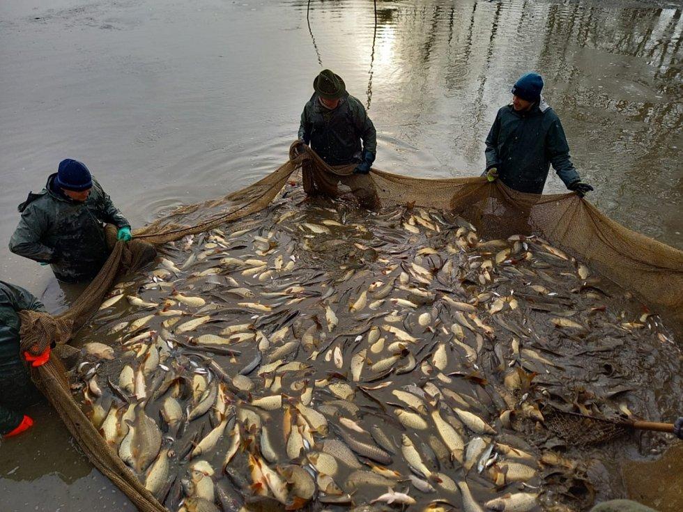 Ledeničtí rybáři v akci. K náplni roku u nich patří výlovy nebo akce pro mládež i další veřejnost.
