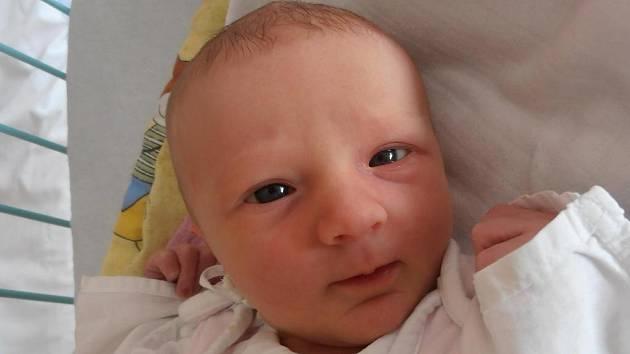 3,17 kg byla porodní váha holčičky  Adély Charvátové. Narodila se v úterý 18.12.2012 v 10 hodin a 22 minut. Dětství bude trávit v Českých Budějovicích.