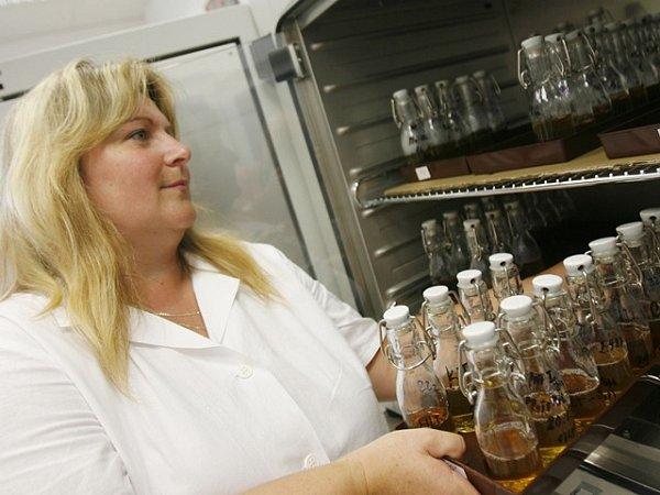 Laborantka Renata Jirková vkládá vzorky odkapových vod do inkubátoru. Jde oto zjistit, zda jsou všechny vypláchnuté trubky a nádoby na pivo absolutně čisté.