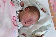 Pavlína a Jan Kalenovi se stali v pondělí 23. 5. 2016 v 16.36 h rodiči. Sofie Kalenová je jejich prvním potomkem. Holčičku, která při narození vážila 3,69 kg, budou vychovávat v Trhových Svinech.