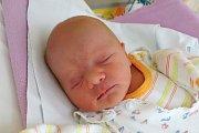 Monika Ševčíková se narodila v českobudějovické nemocnici 8. 11. 2017 minutu po páté hodině ranní. Vážila 2,71 kg. Monika vyrostev Kaplici.