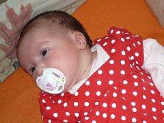 Elenka Stará se narodila 1.9.2011 v 8.16 hodin. Doma z ní mají radost její desetiletý bratr Přemek, mamka Radka a taťka Pepa.