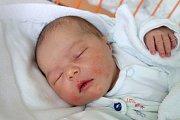 Šárka Vrchotová se mamince Aleně Štíchové narodila 6. 11. 2018 v 7.39 h. a vážila 3,36 kg. První životní krůčky bude dělat v Byňově.