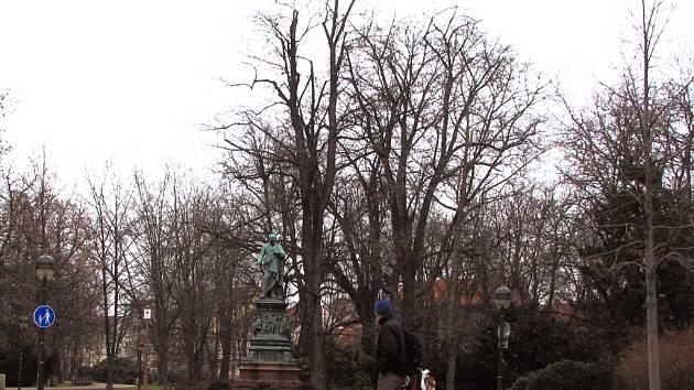 Dendrologové se na pokyn radnice vydají v Českých Budějovicích zkoumat zdravotní stav stromů. Jedním z míst, která se dočkají přešetření bude i park Na Sadech, v jehož centrální části je umístěna socha Vojtěcha Lanny.