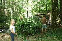 Brigádníci (na snímku sedmiletá Eliška Brychtová z Nových Hradů) vzali letos několikrát zvelebení parku do vlastních rukou.