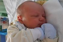 Čtyřapůlletá Vanesska už doma v Českých Budějovicích netrpělivě vyhlíží brášku jménem Samuel Mark Šuba. Ten se pro svůj příchod na svět rozhodl v pondělí 31.3.2014 v 15 hodin a 10 minut. Vážil 3,58 kg.