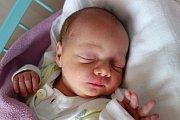 Dvojnásobnou radost má Daniela  Oškrdová, maminka dvojčat  Barbory a Marie Oškrdových. Narodily se 6. 2. 2017, Barborka v 8.17 h    s váhou 2,63 kg, Maruška v 8.18 h s váhou 2,58 kg. Doma v Ločenicích je čekají sourozenci Matyáš  (10let), Anička (8 let) a