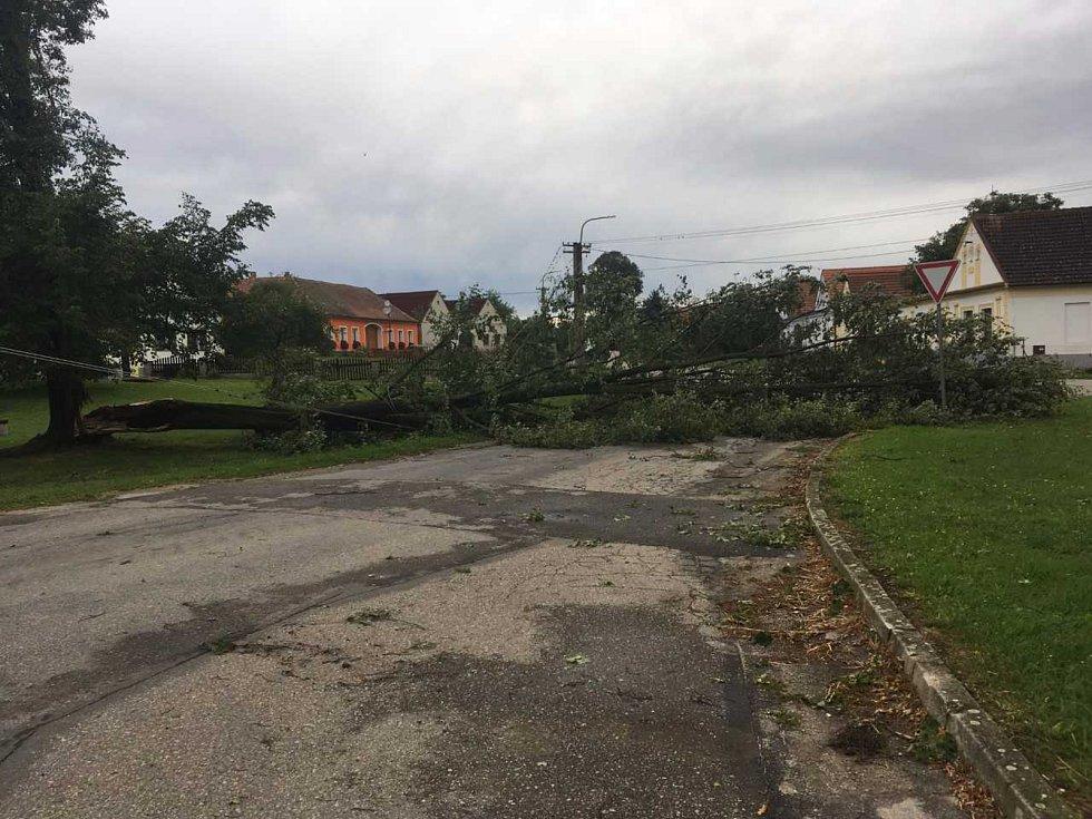 Popadané stromy na návsi v Bošilci ztrhly elektrické vedení. Část obce je bez elektřiny.