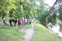 Současná podoba břehů Malše u Malého jezu může být už brzy minulostí. (Fotografie z června 2015).