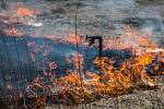 S rostoucími teplotami se na jaře množí případy vypalování trávy. Plošné vypalování trávy je zákonem zakázané. I kvůli silnému větru může pak jednoduše dojít k dalšímu rychlému šíření požáru. Ilustrační foto.