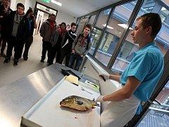 Jihočeská univerzita uspořádala Den otevřených dveří. Snímky z Fakulty rybářství a ochrany vod.