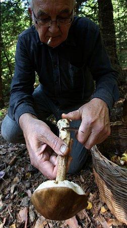 Na houbách sViktorem Faktorem