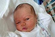 V Netolicích bude vyrůstat Vít Kuliš. Maminka Denisa Kulišová jej přivedla v českobudějovické nemocnici na svět 23. 4. 2018 v 15.49 h. Jeho porodní váha byla 3,67 kg.