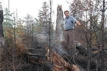 Ředitel národního parku Franz Leibl na požářišti.