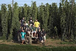 V Žatci vybrali sládci chmel pro přípravu jedinečného piva.