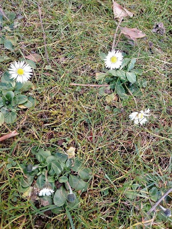 Přichází jaro.