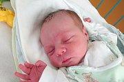 Tříletý Alex bude celoživotním parťákem svému novorozenému bráškovi Lukáši Kvasničkovi. Na svět přišel 16. 1. 2018 v 9.28 h, vážil 3,7 kg. Jeho domovem je Olešník.