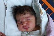 Věra Marcinová se narodila 31. 10. 2017 ve 2.20 h, vážila 3,31 kg. Doma v Č. Budějovicích se na ni těšili sourozenci Milan, Kristian, Ivana, Julia, Slavko, Eva, Daniela a Patrik.