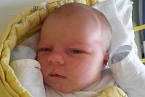 Z prvního potomka se těší Václava a Radek Čermákovi. Jejich dcerka Tereza Čermáková se narodila 31.5.2011 ve 4 hodiny a 37 minut. Porodní váha malé Terezky byla krásných 3,33 kg a vyrůstat bude v Doudlebech.