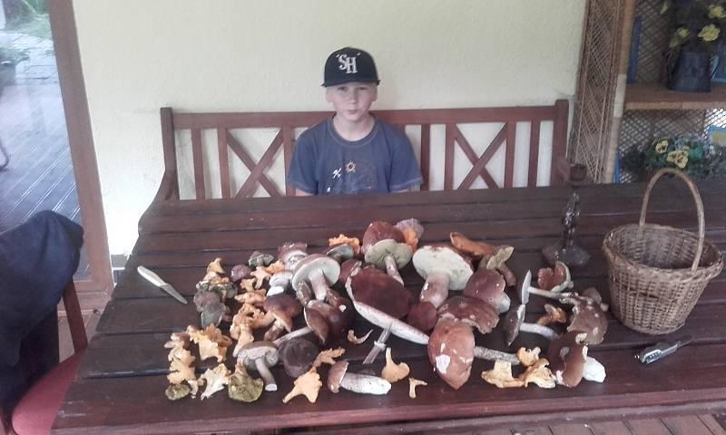 Erik Fuchs z Větřní s houbovou úrodou.