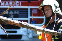 Skoro čtyři desítky popadaných stromů odstraňovali v noci na středu jihočeští hasiči. Ilustrační foto.