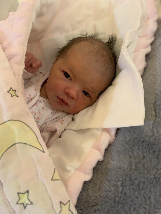 Starším bráškou je od 3. 2. 2021 Kryštof z Horažďovic. Jeho maminka Michala Nedvědová v tento den porodila dceru Justýnu Nedvědovou, vážila 3,05 kg.