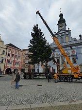 Vánoční strom v sobotu doputoval na náměstí