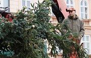 Likvidace vánočního stromu a kluziště v Českých Budějovicích.