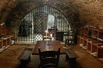 Středoevropské vinné sklepy vznikly v podzemí bývalého borovanského kláštera po renovaci, která trvala tři roky. Navazuje na ně lednice, která nyní slouží jako vinárna.