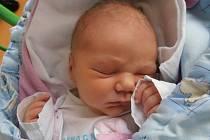 Ve 4 hodiny a 50 minut v úterý 24.12.2013 poprvé pohlédla na svět holčička jménem Adéla Bromová. Po narození vážila 3,61 kg. Vyrůstat bude v Českých Budějovicích.