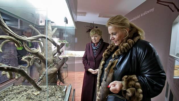 Ministryně pro místní rozvoj Klára Dostálová navštívila České Budějovice a Hlubokou nad Vltavou.