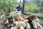 Jiří Moudrý a Monika Chodorová kteří našli desítky milovaných hub v průběhu dvou hodin v lesích pod Kletí.