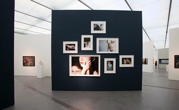 VLinci pořádají od 18.do 21.února Muzejní dny. Do devíti galerií a muzeí bude společné vstupné 10eur, program míří hlavně na rodiny sdětmi. Snímek zvýstavy Krkavčí matky vMuzeu umění Lentos, trvá do 21.února.