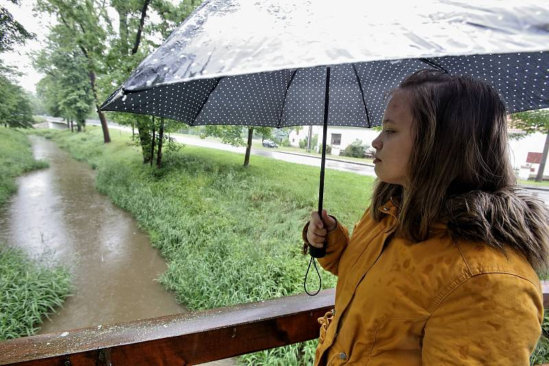 Po několikadenním vytrvalém dešti stoupají hladiny řek.